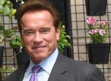 Arnold Schwarzenegger au petit écran